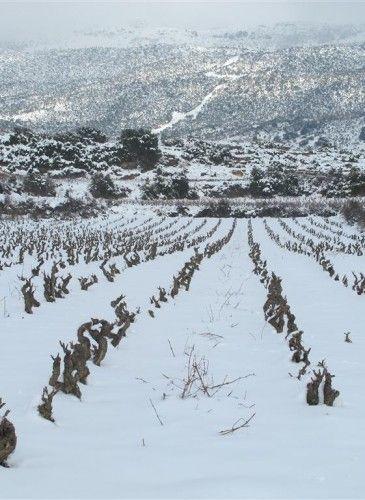 invierno (2)