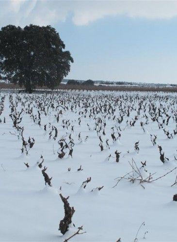 invierno (3)